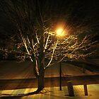 Winter Street Lights by Monnie Ryan
