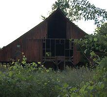 dark side of the barn by amy welborn