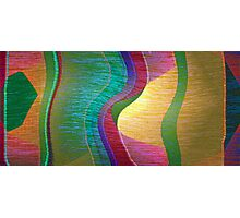 TAPESTRY Photographic Print