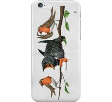 Cock Robin (wordless) iPhone Case/Skin