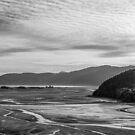 Dawn Estuary by John Violet