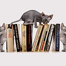BOOKENDS by Mugsy