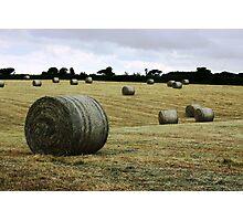 Summer East Cork Ireland Photographic Print