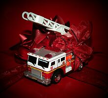 The Gift ... by Rita  H. Ireland