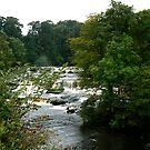 Asgarth Falls by Trevor Kersley