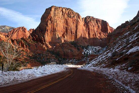 Kolob Canyons by Patricia Montgomery