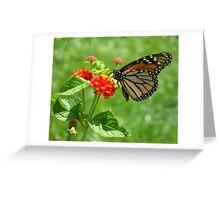 Monarch on Lantana Greeting Card