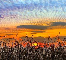 Indiana Sundown by Kenneth Keifer