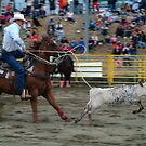 Calf Roping by Merilyn