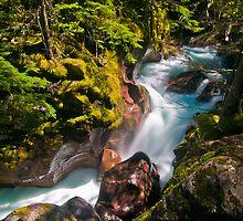 Avalanche Gorge, Glacier National Park by Gary Lengyel