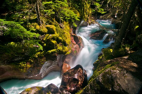 Avalanche Gorge, Glacier National Park by Gary Lengyel