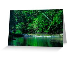The Emerald Forest Greeting Card