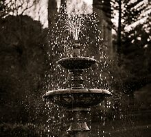 Governors Fountain, Port Arthur, Tasmania by Angela McConnell