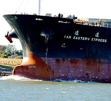 Coal ship Newcastle Harbour - Far Eastern Express by Phil Woodman