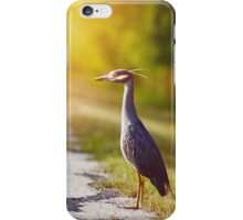 Night Heron Waiting for His Ride iPhone Case/Skin