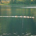 Norway Pond by Roslyn Lunetta
