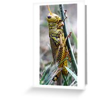Suit of Armor Greeting Card