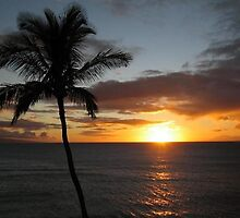 Sunset at Lahaina, Hawaii by chord0