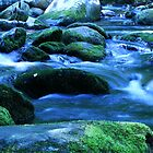 Great Smokey Mountain Creek by raorrick
