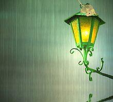 Raining by shalisa