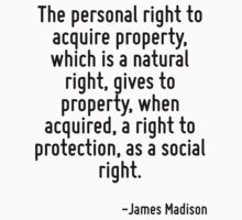 The personal right to acquire property, which is a natural right, gives to property, when acquired, a right to protection, as a social right. by Quotr