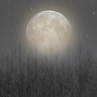 The Moon Shines Bright (Birch Moon II) by soaringanchor