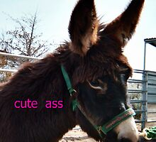 Cute Ass! BLM burros totally rule! by wildassshirts