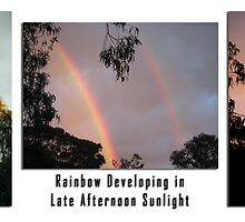 Rainbow Developing in Late Afternoon Sunshine by Keith Richardson