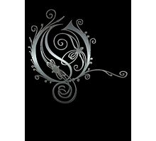 ANTIQUE FILIGREE LETTER OPETH - Reel Steel Photographic Print