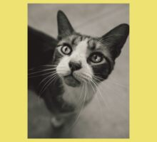 Gray Cat was in love with me; California Sidewalk Kids Clothes