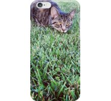 Cat on the Hunt iPhone Case/Skin