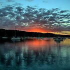 SYDNEY NORTHERN BEACHES CALENDAR - PHILIP JOHNSON PHOTOGRAPHY by Philip Johnson