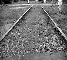 dormant tracks.. by Wendy L Vandeven