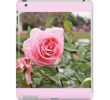Rosy iPad Case/Skin