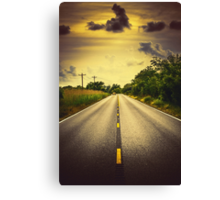 Louisiana Highway 82, an ample opportunity to see gators crossing the road Canvas Print