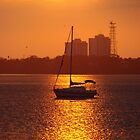 Setting Sail by Flabosoxfan