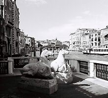 Venice Grand Canal Mornings by Venice