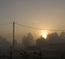 Warm Fog Sunrise by erikaadams
