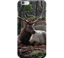 Elk King and his Queen  iPhone Case/Skin
