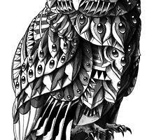 Owl 2.0 by BioWorkZ