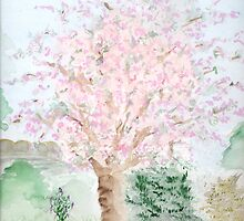The Cherry Tree by Anne Gitto
