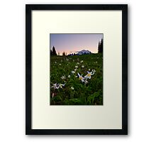 Avalanche of Lillies Framed Print