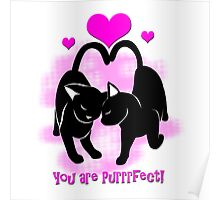 Valentines Day Cats Poster