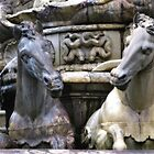 Marble Sea-horses - Fountain of Neptune, Florence by Marilyn Harris