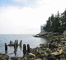 Mackerel's Home by Halifaxgus