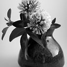 Red Clover in B&W by KarenEaton