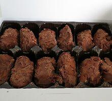 Belgian Truffles by MidnightMelody