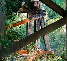 Wooden Trestles - Duff's Bridge, Dingo Creek NSW by Bev Woodman
