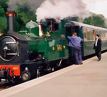 Train at Welshpool Station by Peter Sandilands