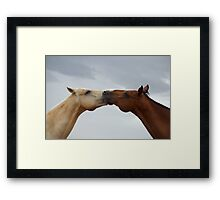 Arched horses Framed Print